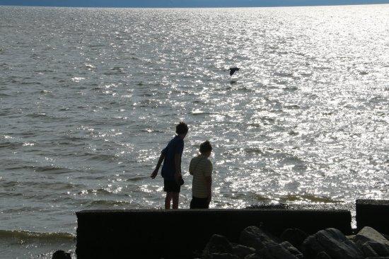 Buchanan, TN: Boys Playing By Old Concrete Landing... Heron Flying