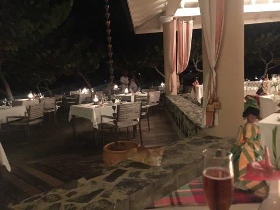 Rendezvous Resort: Beautiful resort!