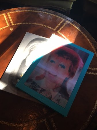 Granada Hotel And Bistro David Bowie Coffee Table Book One Of Many Artistic Books