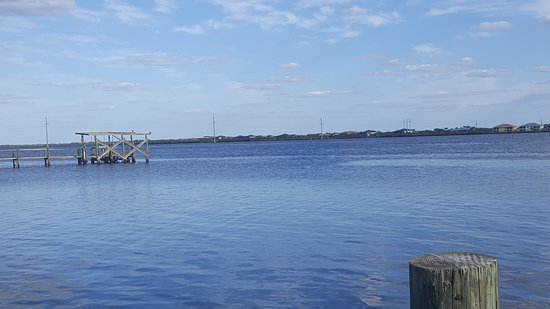 Ellenton, FL: Freak views