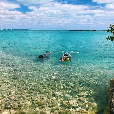 Bahamas Out Island Adventures - Day Trips: snorkeling
