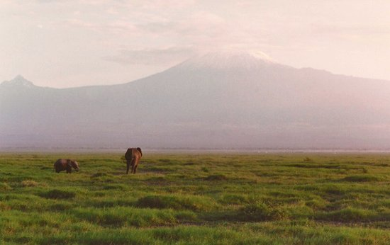 View of Mount Kilimanjaro in Tanzania from Amboseli National Park in Kenya