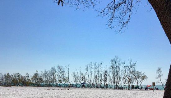 Fort De Soto Park: beach from a distance