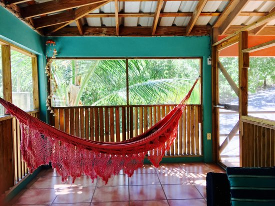 Casa Resaca: Relax in the hammock