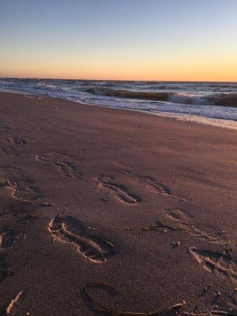 Caladesi Island State Park : sunset on the way back