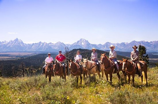 Horseback Riding in the Bridger-Teton...
