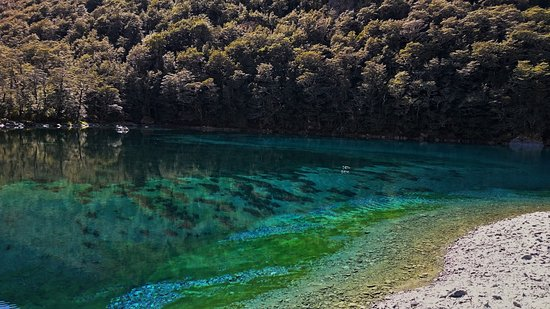 Blue Lake in the Nelson Lakes National Park has the world title for the clearest body of fresh w