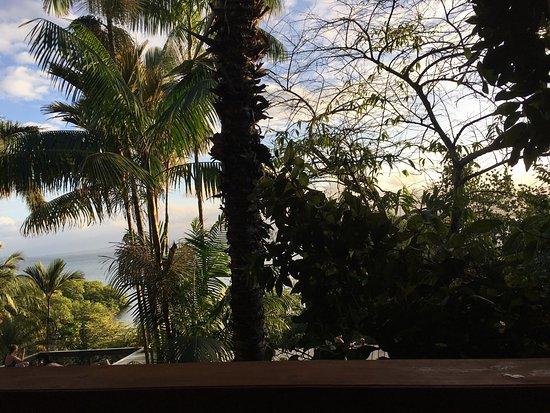 Isla Solarte, Panama/Panamá: photo3.jpg