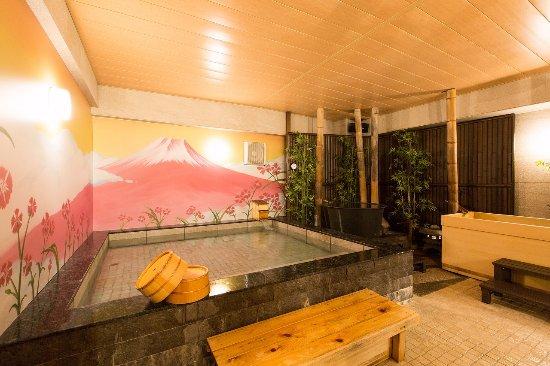 Image result for Nadeshiko Hotel Shibuya