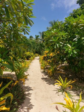 藍礁湖海灘度假酒店照片