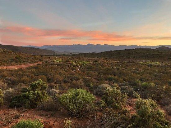McGregor, South Africa: Sunrise