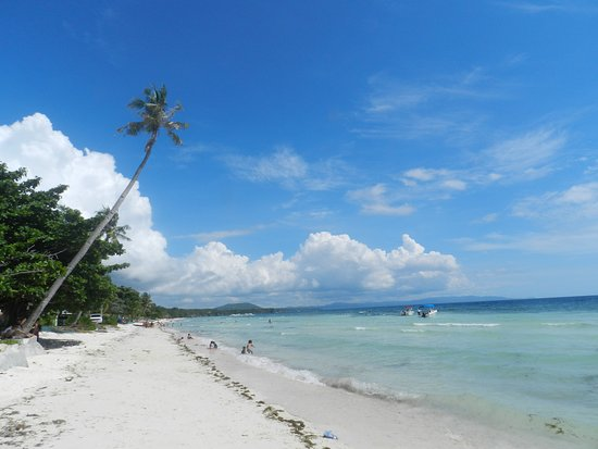 Panglao Chocolate Hills Resort Our 3km Long Fine Sandy White Beach 500m From