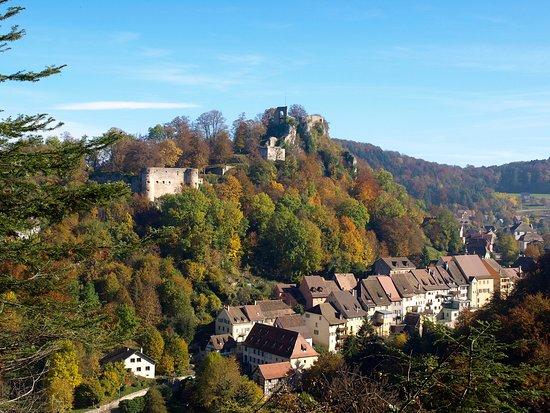 Le château et la ville de Ferrette