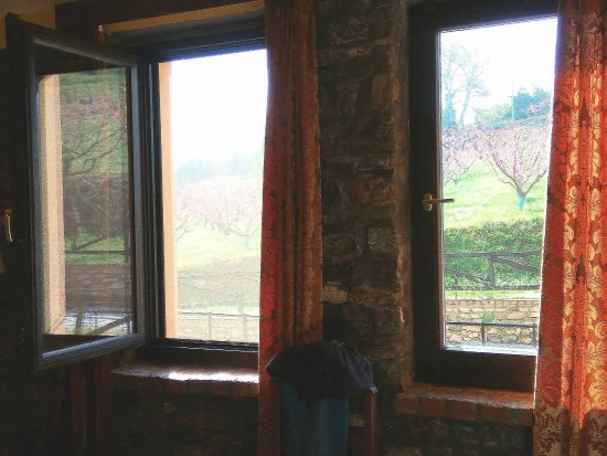 Esperides Hotel : Η θέα έξω απ'το παράθυρο...