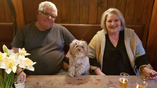 Crafthole, UK: My friends and Molly Wiggins, who should not have her paws on the table but was just posing for