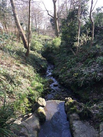 Sandgate, UK: Enbrook Park