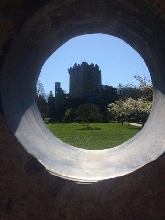 قلعة وحدائق بلارني: Blarney Castle & Gardens