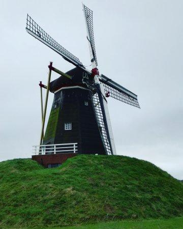 Beesel, Belanda: Molen De Grauwe Beer