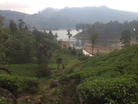 Dickoya, Sri Lanka: photo1.jpg