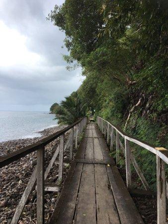 Roseau, Dominica: photo2.jpg