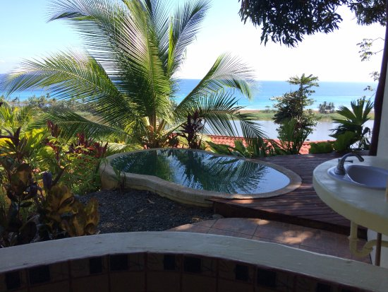 Carate, Коста-Рика: View from shower in bungalow No. 5