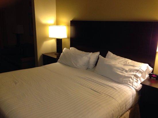 Holiday Inn Express Charleston/Kanawha City : Room 123