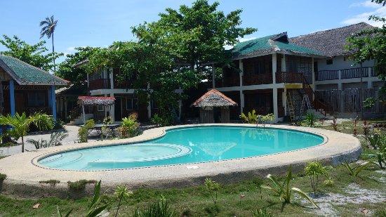 Purple Snapper Dive Resort: Pool area