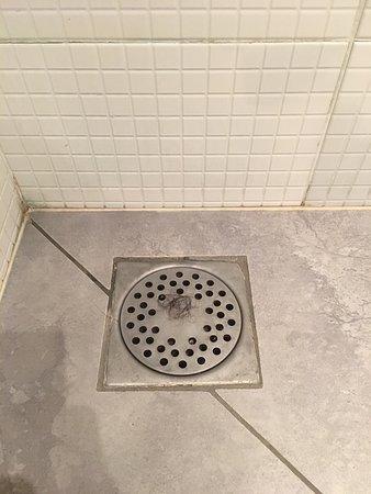 Дре, Франция: Chambre 9, évacuation de la douche n'était pas correctement nettoyée, répugnant !!!