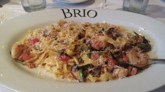 Brio Italian Restaurant Tampa Florida