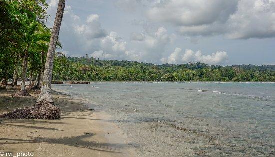 Puerto Viejo Beach: Playa Negra
