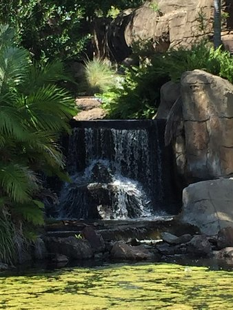 Kershaw Gardens: photo1.jpg