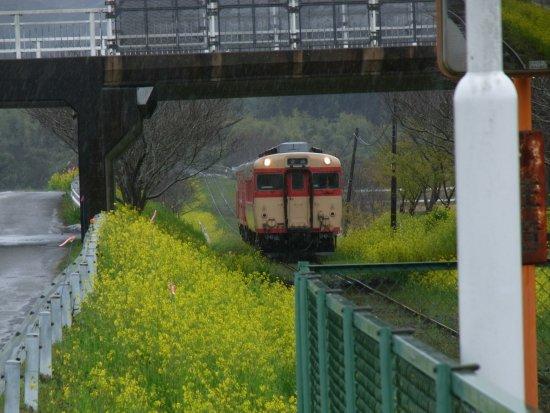 Otaki-machi-billede