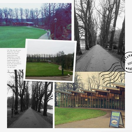 Preston, UK: IMG_20170119_164017_918_large.jpg