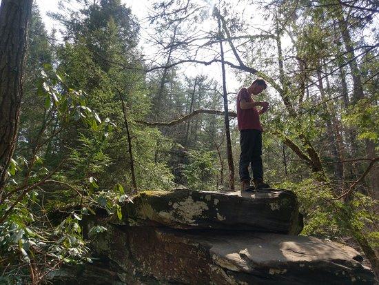 Slade, KY: Standing on top of Rock Bridge.