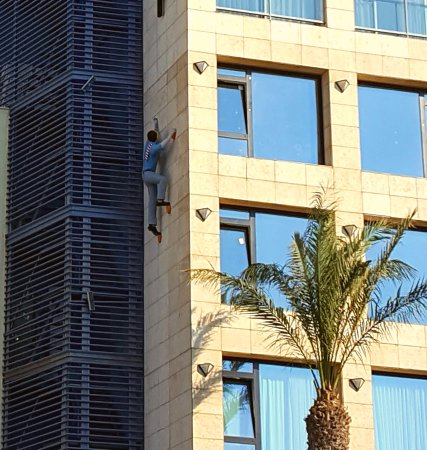 Melody Hotel   Tel Aviv - an Atlas Boutique Hotel: This fella just didn't want to leave I suppose (lol)