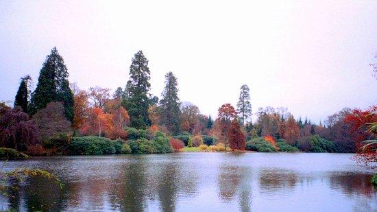 Uckfield, UK: Sheffield Park © Robert Bovington