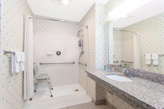 هوثورن سوتس باي وندام هولاند/توليدو إريا: Accessible Guest Rooms available with roll in shower