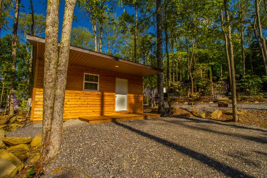Cosby, TN: Cute Cabins on site
