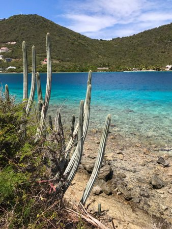 Frenchman's Cay: Frenchmans point