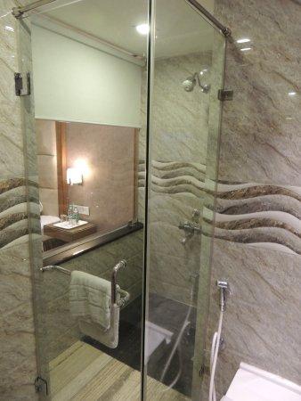 Hotel Sandesh The Prince: Premier Room