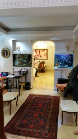 Blue Istanbul Hotel Photo