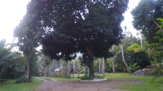 Agohay Villa Forte: P_20170315_053832_large.jpg
