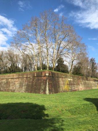 Le mura di Lucca: Muralha antiga, bem conservada e linda.
