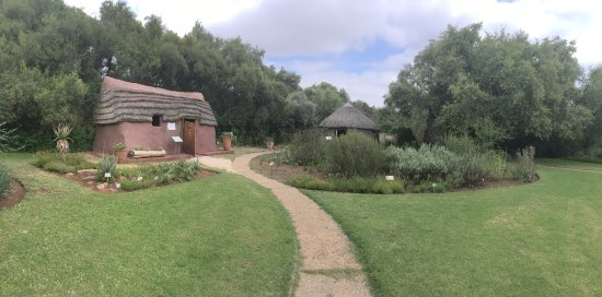 Free State National Botanical Garden : Traditional medicinal plant garden.