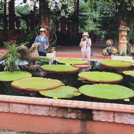 Superieur Vallarta Botanical Gardens