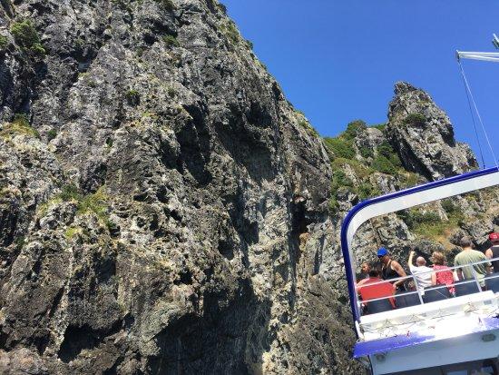 Paihia, Nueva Zelanda: Just about to sail through the Hole