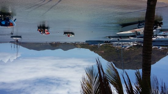 Terre-de-Haut, Guadeloupe: IMG-20170328-WA0003_large.jpg