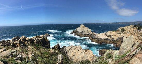 Point Lobos State Reserve: photo1.jpg