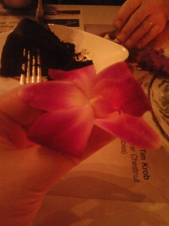 Bangkok Wok: Lovely fresh orchid adorns their dark chocolate cake!