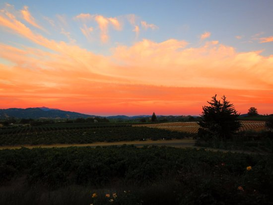Geyserville, CA: Sunset at Rustic